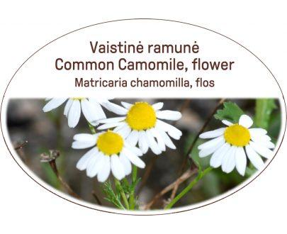 Common Camomile, flower / Matricaria chamomilla, flos