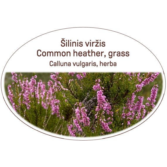Common heather, grass / Calluna vulgaris, herba