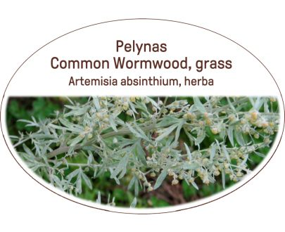 Common wormwood, grass / Artemisia absinthium, herba
