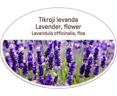 Lavender, flower / Lavandula officinalis, flos