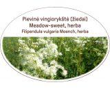 Meadow-sweet, herb / Filipendula vulgaris Moench, herba
