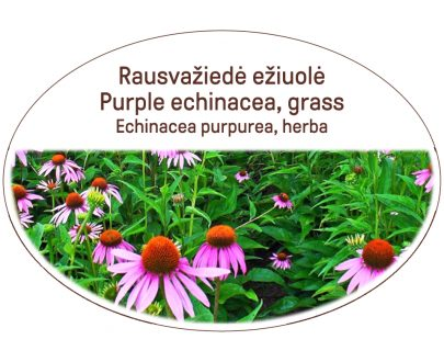 Purple echinacea, grass / Echinacea purpurea, herba