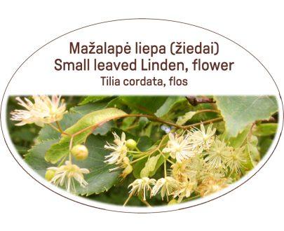 Small leaved Linden, flower / Tilia cordata, flos