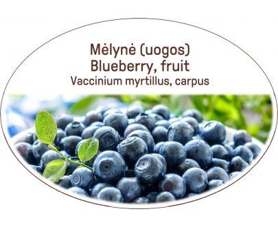 Blueberry, fruit, Vaccinium myrtillus, carpus