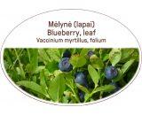 Blueberry, leaf, Vaccinium myrtillus, folium