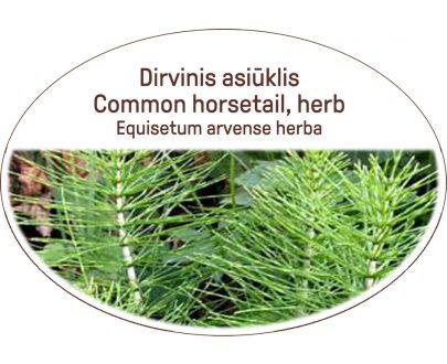 Common horsetail, herb / Equisetum arvense, herba