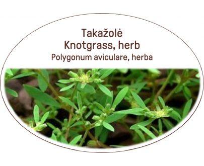 Knotgrass, herb / Polygonum aviculare, herba