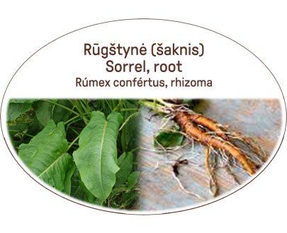 Sorrel-, root, Rumex confertus, rhizoma