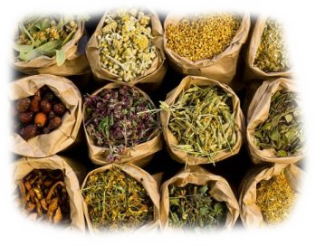 Moderate consumption of Herbal Teas